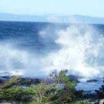 Ocean Action…..