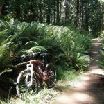 Mountain biking…..