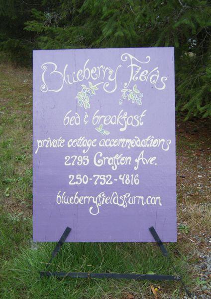 Blueberry Fields…..
