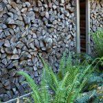 Wood piles…..