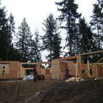 New house framing…..