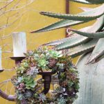 Succulent Wreaths…..