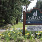 Milner Gardens Spring Plant Sale…..