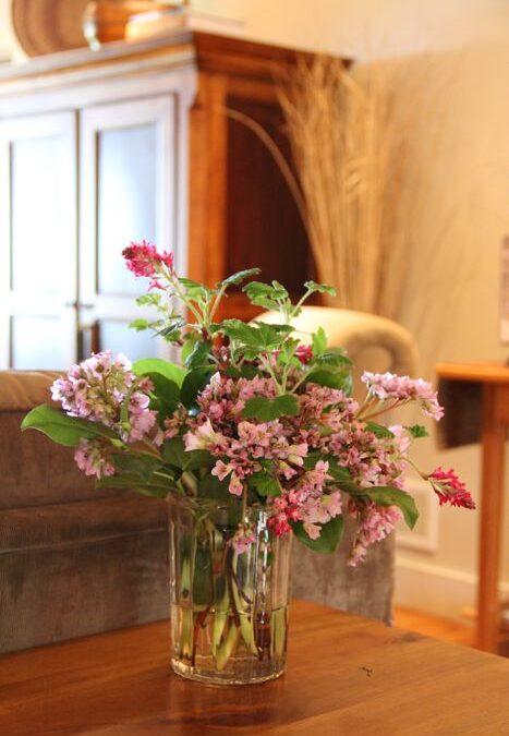 First garden bouquet of spring…..